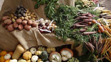Bio Öko Lebensmittel Gemüse
