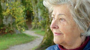 Rente Rentnerin Frau Oma Alter Natur